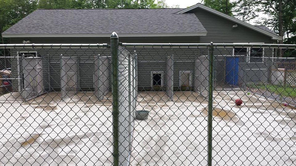 Windy Mountain Kennels, Granville, NY - Cat and Dog Boarding